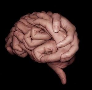 Gehirn in Händen